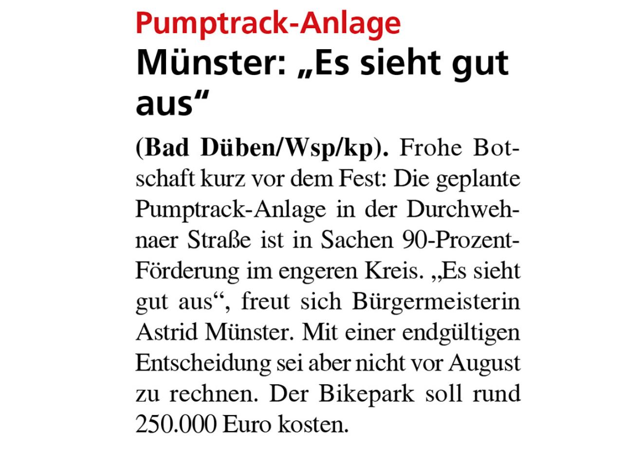 Dübener Wochenspiegel vom 16.12.2020